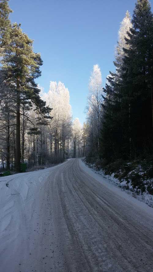 Zweden in de winter